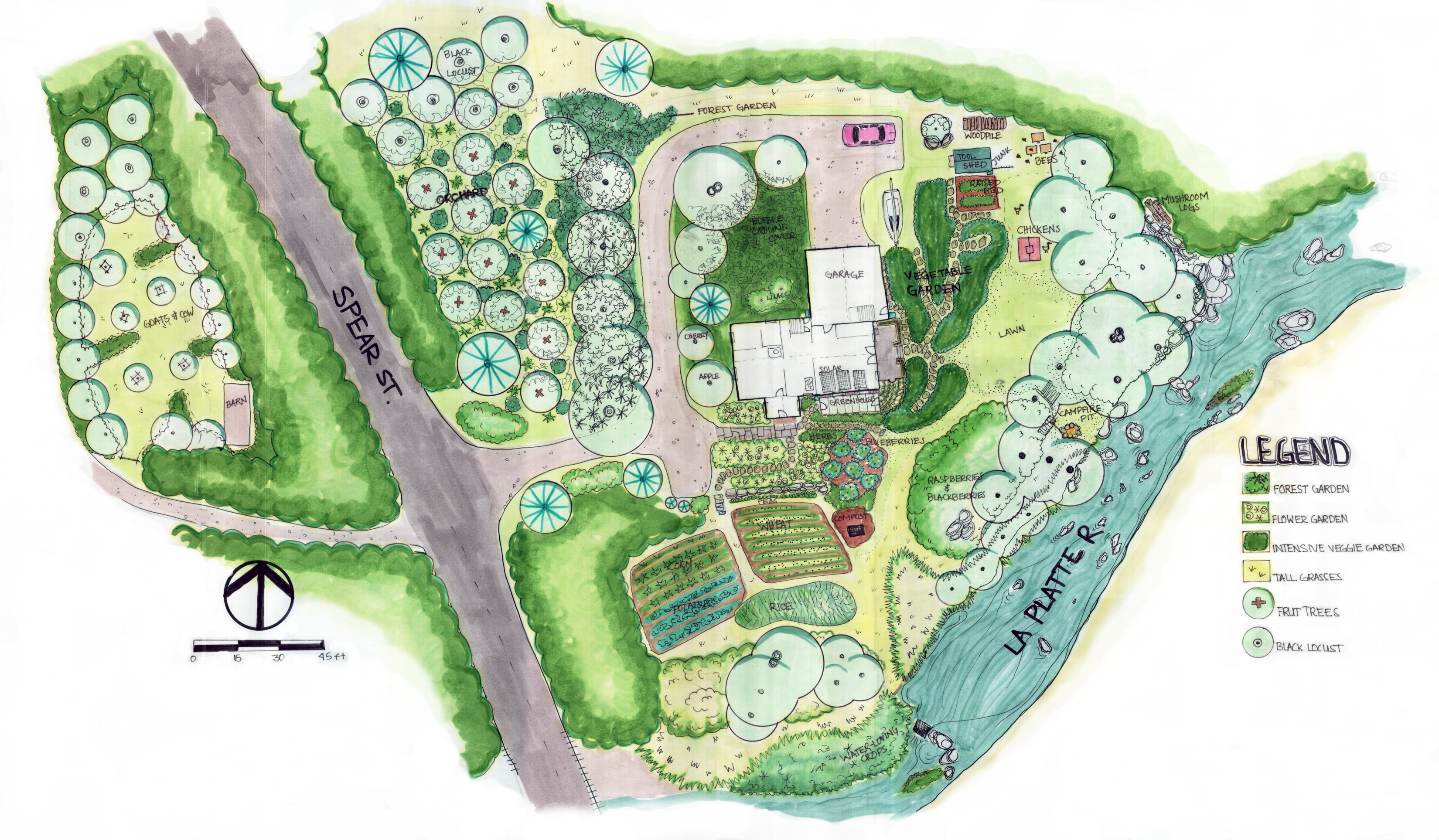 Permaculture garden design and forests on pinterest for Permaculture garden designs